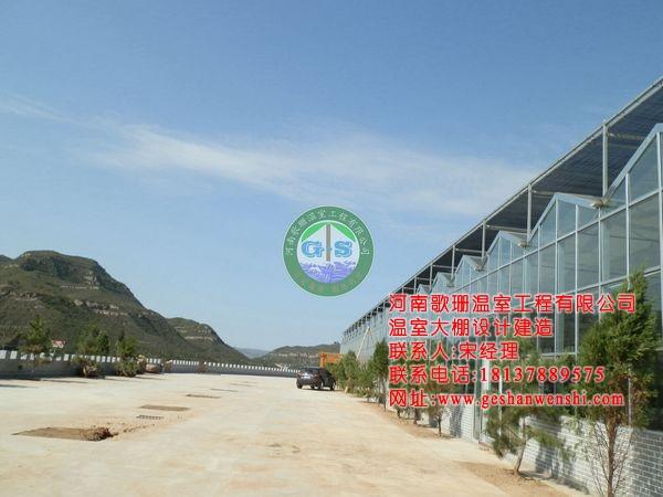 山西临汾生态园酒店温室工程案例2.JPG