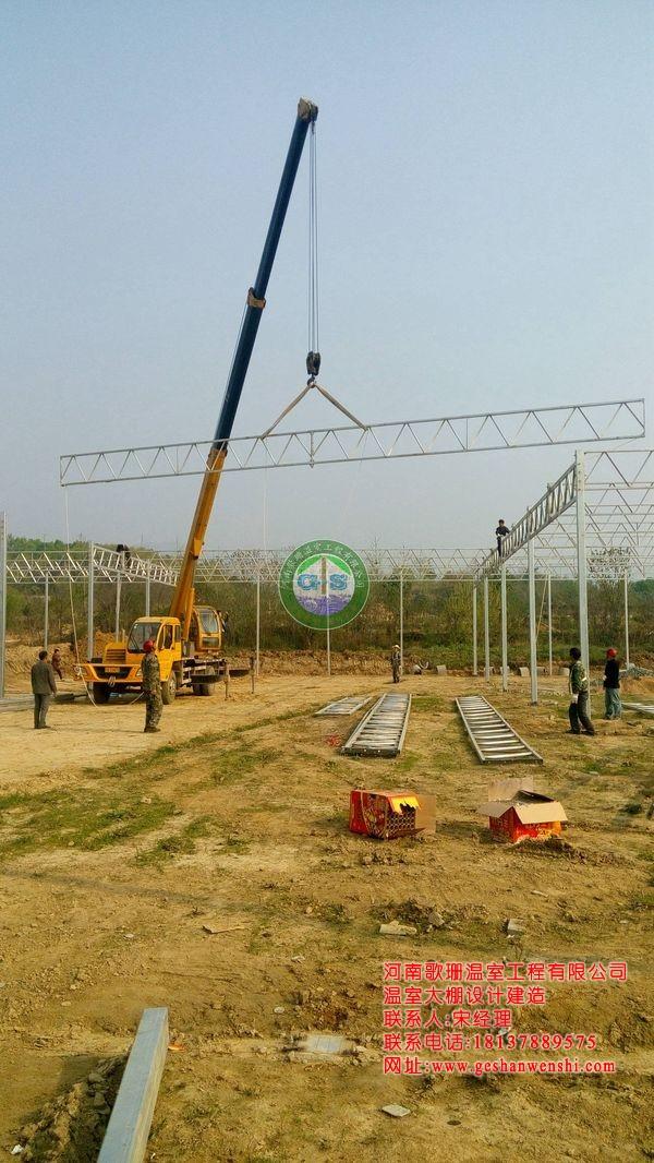 湖北武汉木兰花园生态园餐厅温室投入运营1.jpg