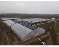 【歌珊温室】安徽淮南30米大跨度椭圆管带棉被单体大棚施工案例